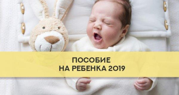 В Коми социальные пособия на ребенка повысят в 2019 году