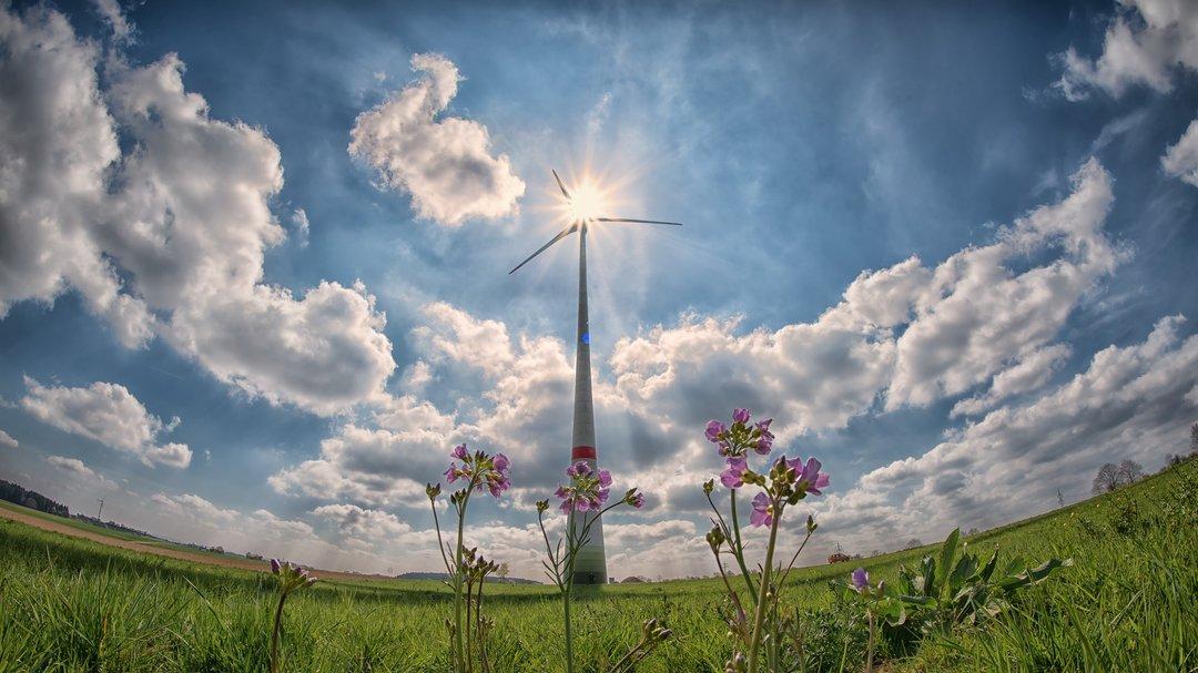 Чи переживе Україна енергореформи-2019