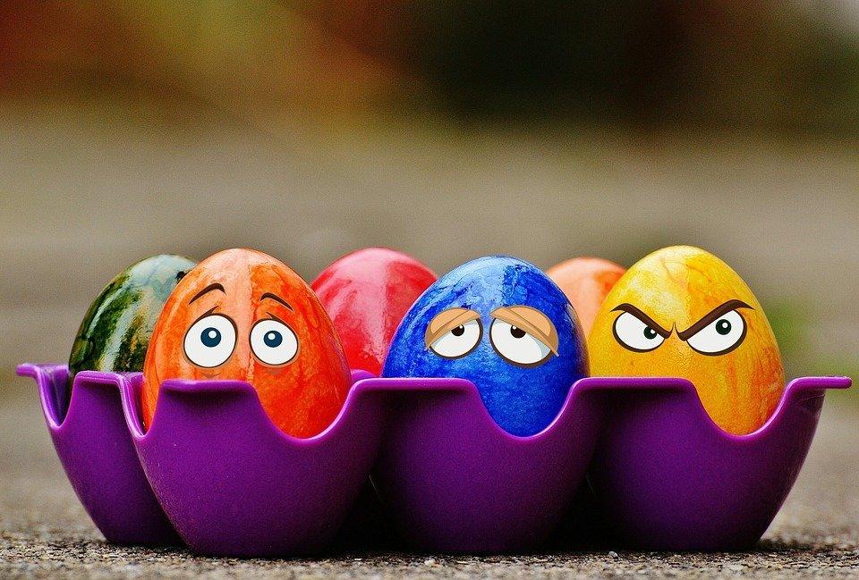 Украина существенно нарастила экспорт яиц