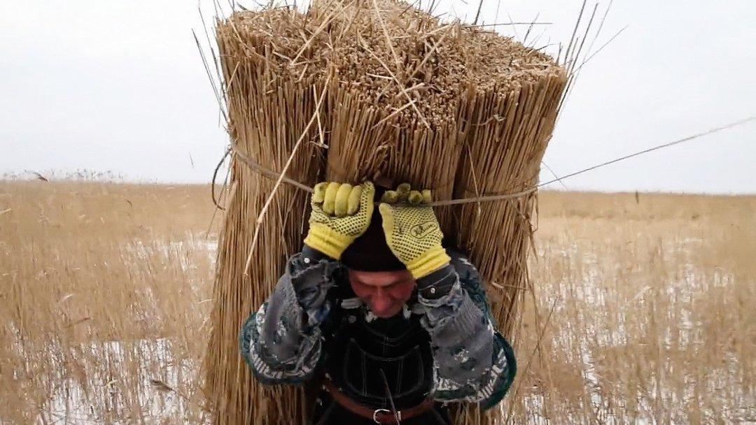 Український кінематограф сьогодні: є підстави для оптимізму